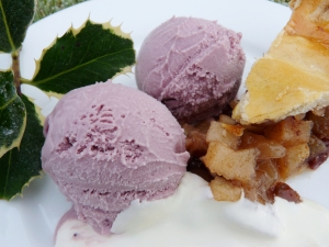 elder rob ice cream 2