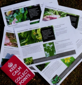 boden foraging sheets
