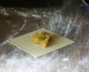 Pumpkin tortellini stage 1