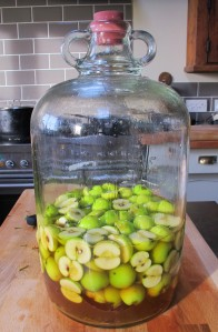 crab apple brandy just started