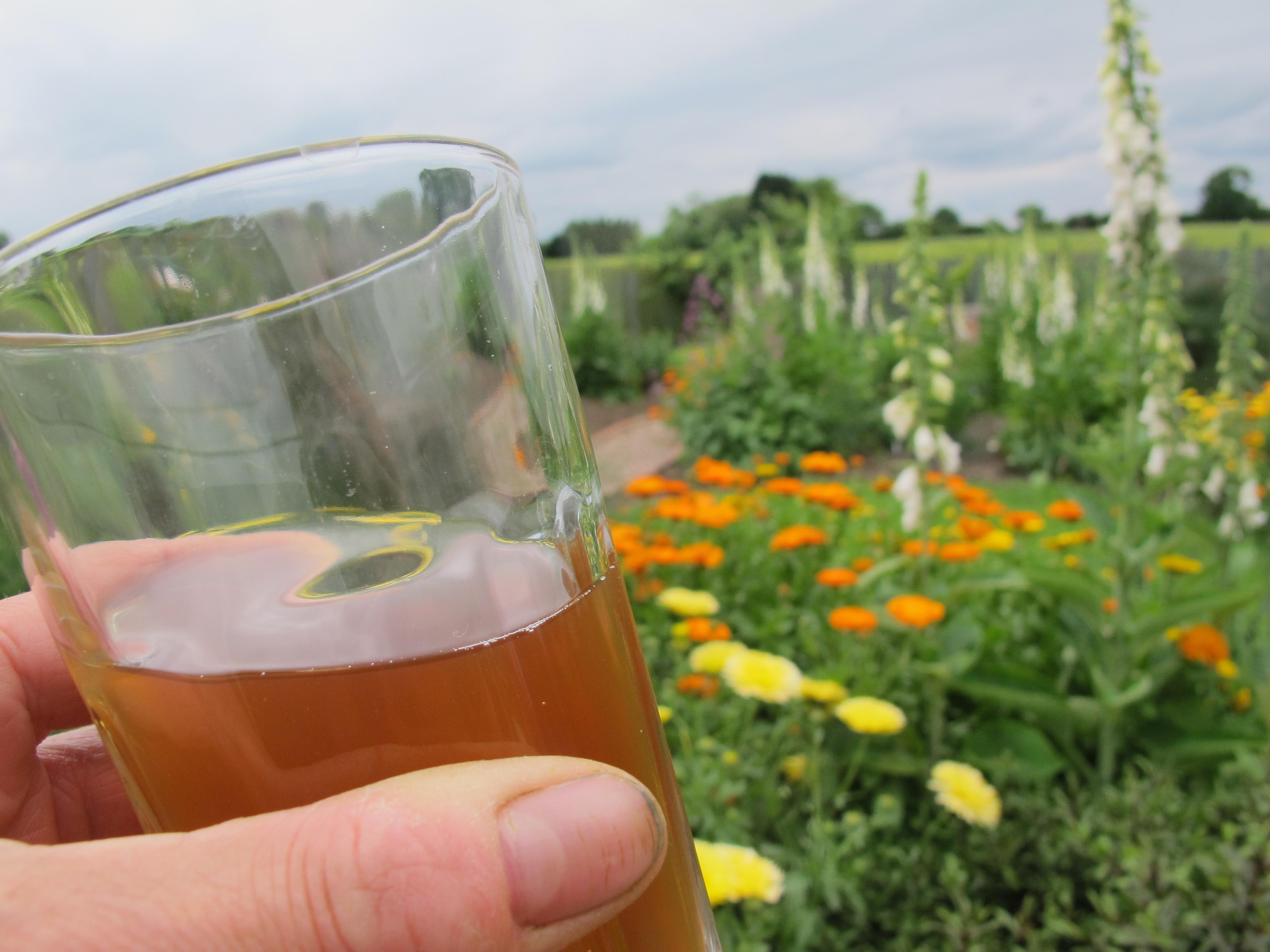 nettle beer 'Taste the Wild'
